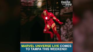Marvel Universe LIVE! brings stunt show to Tampa this weekend | Taste and See Tampa Bay - Video