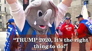 Americans Say! TRUMP 2020 It's The Right Thing To Do | Washington DC | 2020-12-12