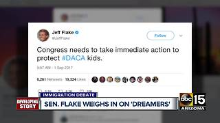 Arizona's congressional members react to DACA news - Video