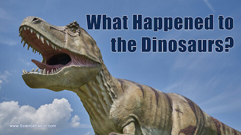 What Happened To The Dinosaurs (And You)?