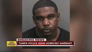 Police: Felon with outstanding warrants wanted for Tampa homicide, reward offered - Video