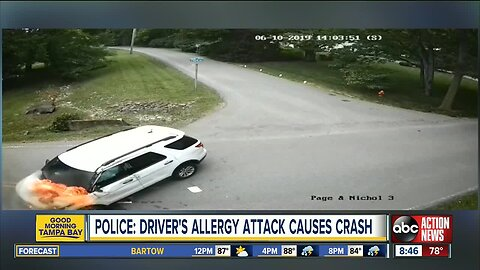 Driver loses control, crashes vehicle after allergy attack, police say