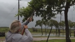 Man Trims Trees with Shotgun During Hurricane Harvey Wind Storm - Video