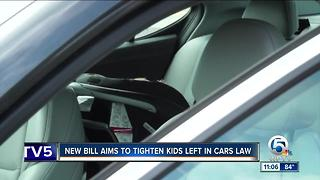 Bill to tighten law on leaving kids in hot cars - Video