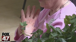 Study: Dementia rates for 65 and older dropping - Video
