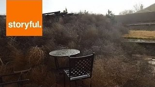 Tumbleweed Mountains 'As High As Roofs' Form in Albuquerque - Video