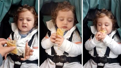 Watch: Sleepy tot can't keep eyes open but clutches Gregg's sausage roll like life depends on it