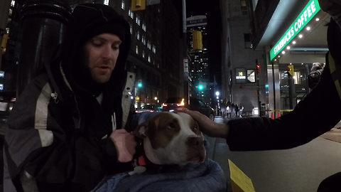 Man Explains Why Pets Mean So Much To Those Who Are Homeless