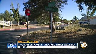 Woman viciously attacked while walking - Video
