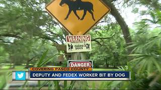 Video shows dog attack Pasco deputy in Dade City