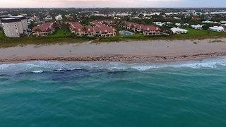 Florida Surfers Get a Surprise Visit From Multiple Sharks - Video