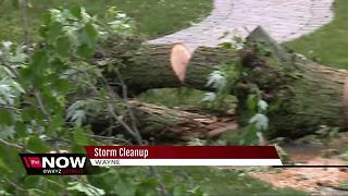 Metro Detroiters clean up after severe storms