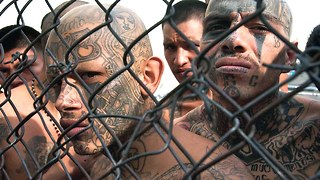 Top 10 Most Dangerous Gangs - Video