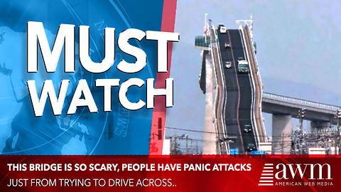 Scary Bridge In Japan Actually Gives Drivers Panic Attacks