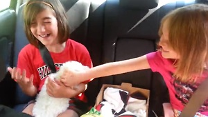 Girl's emotional reaction to getting puppy - Video
