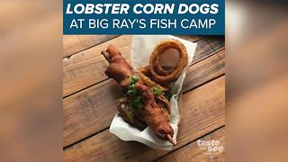 Foot long lobster corn dogs!? Big Ray's in Tampa creates new seafood staple - Video