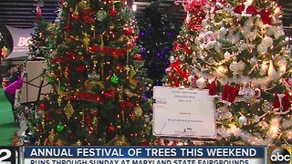 Kennedy Krieger Festival of Trees opens this weekend - Video
