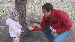 Squirrel decides to store nuts inside human's jacket - Video