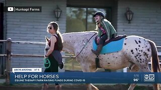 Equine Therapy Farm raising funds during COVID-19