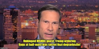 MSNBC guest Frank Figliuzzi claims Trump ordering flags at half mast was secret Heil Hitler sign