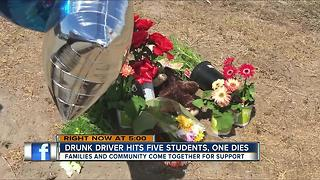 Drunk driver hits five students, one dies - Video