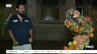 National Pumpkin Day in downtown Fort Myers