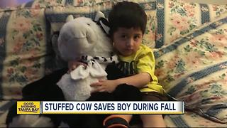 Huge stuffed cow saves 2-year-old boy after fall out window - Video