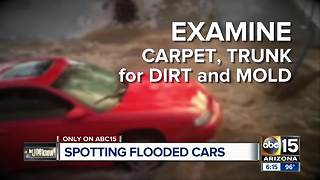 Don't be scammed: tips to find out if a car was damaged in a flood - Video