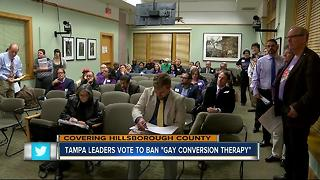 Tampa city council votes unanimously to ban conversion therapy - Video