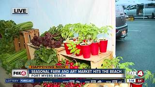 Season farm and art market opens on Fort Myers Beach - 7am live report - Video