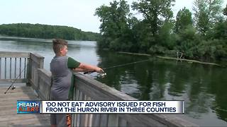 'Do not eat' advisory issued for fish from Huron River within Oakland, Washtenaw counties - Video