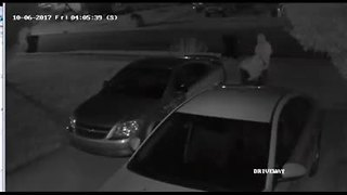 Car break-in suspects caught on home surveillance camera - Video