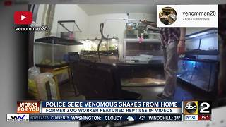 Police seize venomous snakes from home - Video