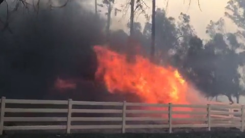Rapidly Growing Fire Destroys Ranch in North Los Angeles