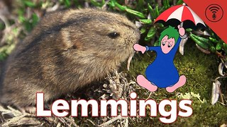 Stuff You Should Know: Don't Be Dumb: Lemmings - Video