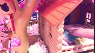 Hamsterrific Life for Shibuya the Pampered Hamster - Video