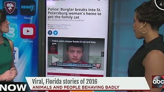 Viral, Florida stories of 2016 - Video
