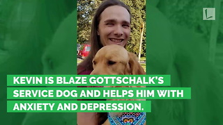 Service Dog Missing after Crash. Week Later, What Teens Find Leaves Family 'Ugly Crying' - Video