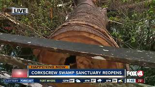Audubon's Corkscrew Swamp Sanctuary partially reopens after Irma - Video