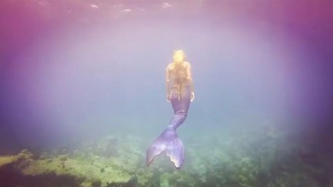 Real life mermaid breaks freediving record in epic video