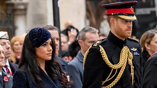 Harry And Meghan not actually quitting the family business