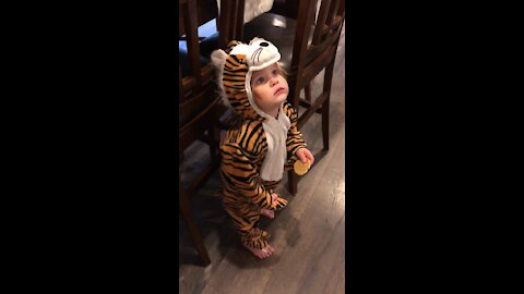 Baby in tiger outfit totally speechless after meeting man in giraffe outfit