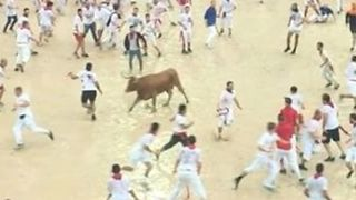 Bull Runs Over Man During San Fermin Festival in Pamplona - Video