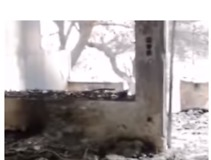 Volunteers Search For Survivors as Death Toll From Greek Wildfires Rises - Video