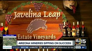 Arizona wine industry sipping on success - Video