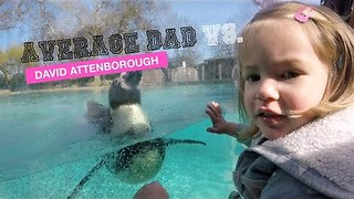 Average Dad Takes Daughter to the Zoo - Video