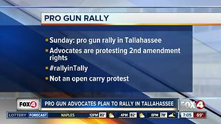 Pro-2nd Amendment rally planned in Tallahassee - Video