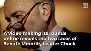 Schumer Wishes This Video Of Him Being Honest About Illegals Never Existed - Video