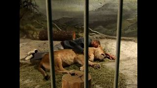 Man Lives In Cage With Lion - Video
