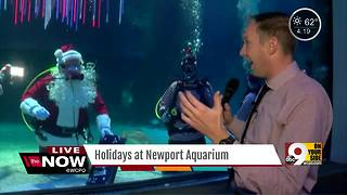 Scuba Santa returns to Newport Aquarium, but who's on the 'nice' list? - Video
